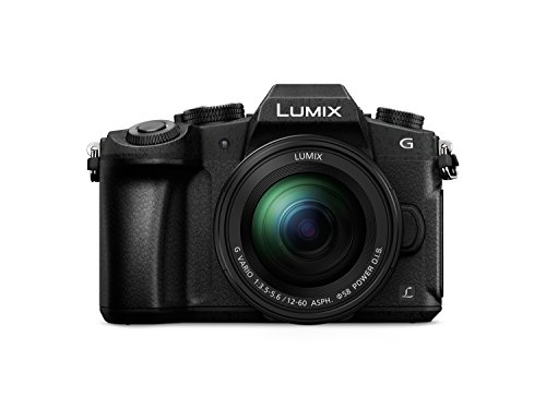 Panasonic DMC-G81MEG-K Lumix G Systemkamera 16 MP mit Objektiv H-FS12060/F3,5-5,6 OIS schwarz