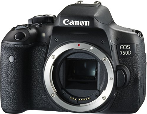 Canon EOS 750D DSLR Kamera Review - 9